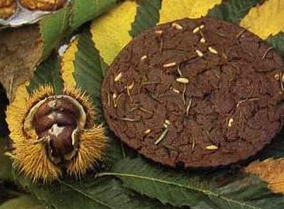 Torta tipica umbra: Castagnaccio
