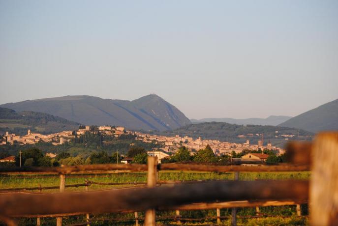 Agriturismo vista panoramica su Assisi