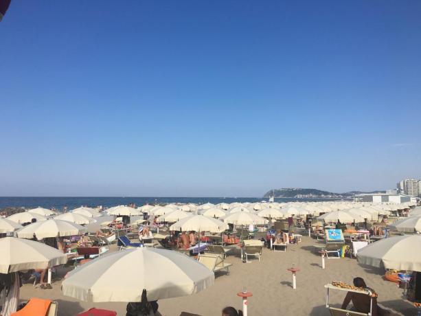 Hotel con spiaggia privata nel Lungomare di Misano
