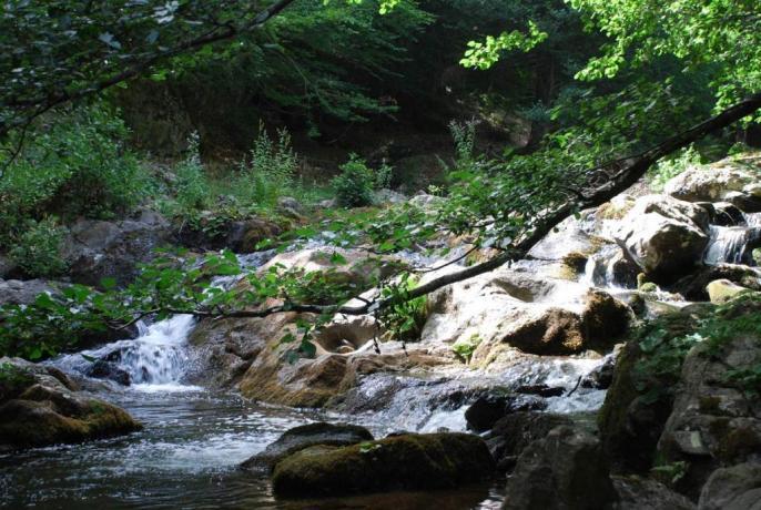 Visitare i parchi nazionale della Calabria