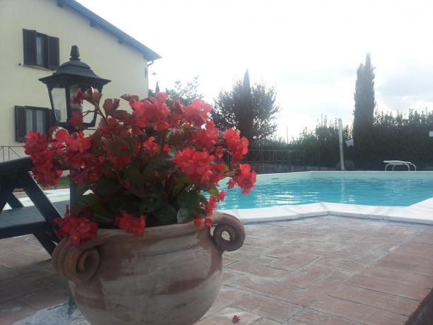 Casale privato Agrituristico con piscina, a Montefalco Umbria centrale, completamente recintato, 3 appartamenti per max 12 persone.