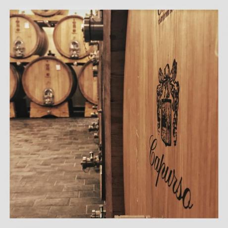 Produzione di vino in agriturismo