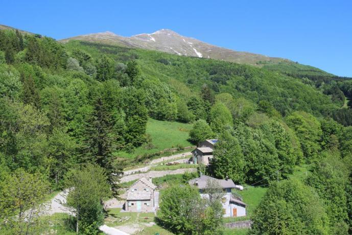 Appartamenti immersi nel verde in Emilia-Romagna