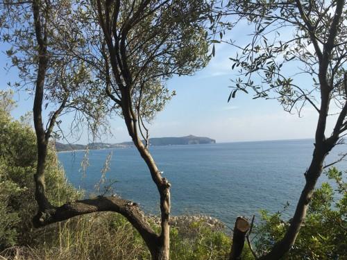 Vista Panoramica Mare di Palinuro