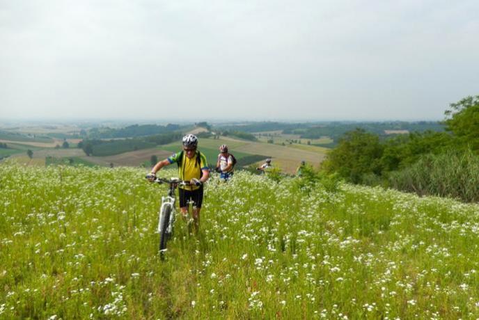 Biciclette disponibili in Agriturismo
