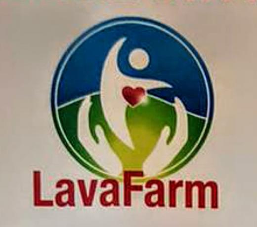 LAVAFARM: sanificazione con Ozono Tessuti e Vestiti