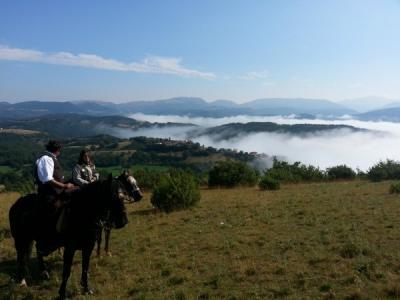 Possibilità di passeggiate a cavallo ed escursioni