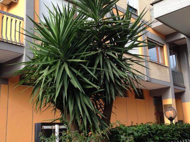 Hotel al centro di Aprilia
