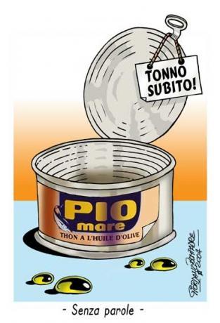 Vignetta   Tonno   Fumetti   Torno Subito