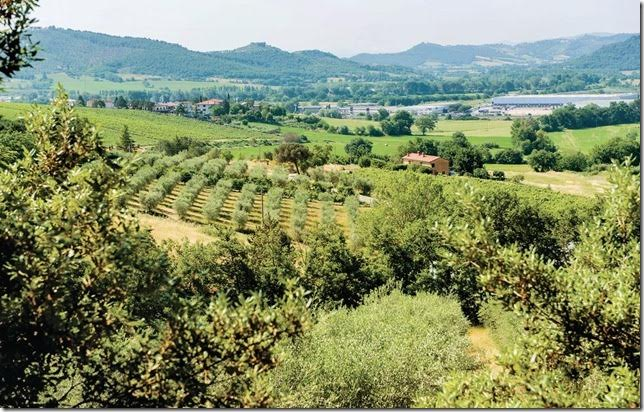 Casa vacanza con vista panoramica nel verde Magione