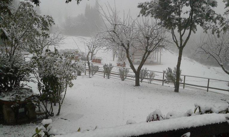 Country House a Bettona vicino Assisi con SPA