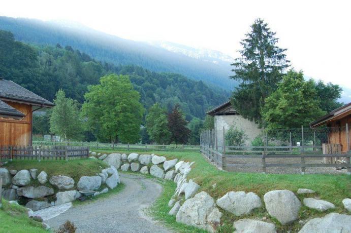 Viale agriturismo Parco Adamello Brenta vicino Pinzolo