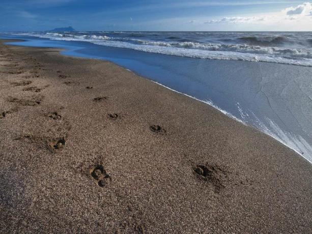 Albergo 4 stelle a Latina con spiaggia privata
