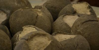 Uova di dinosauro a Gubbio
