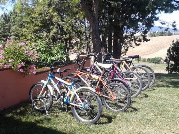 Noleggio biciclette a Pisa
