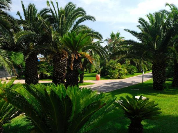 Villaggio in Puglia 4 stelle: area-verde total relax