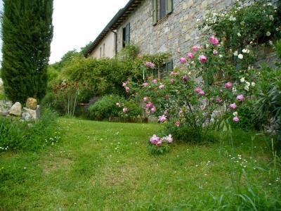 Bellissimo giardino del bb
