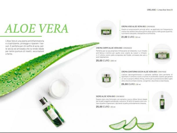 Imperya Catalogo:  Aloe-Vera