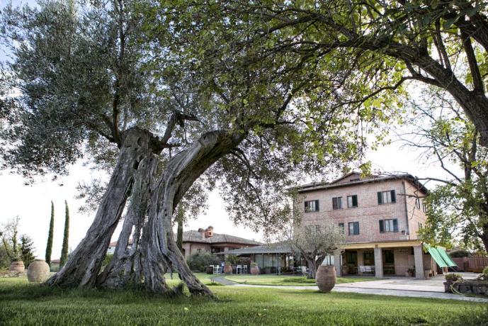 Hotel a Pozzuolo, con piscina giardino vista lago