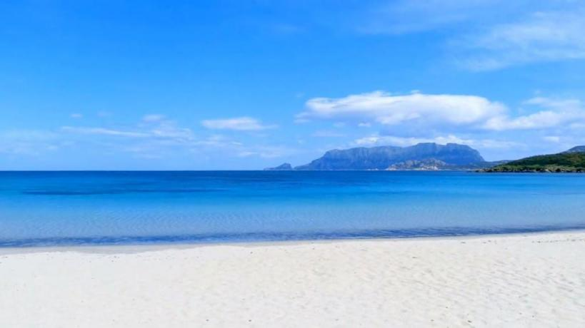 magnifica spiaggia di pittulongu a 1 km dall'hotel