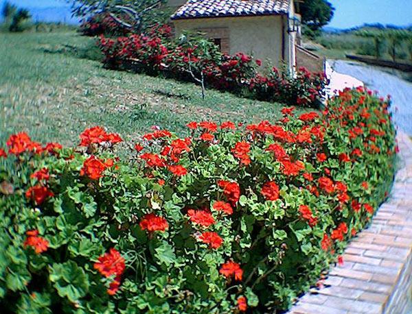 Casale ideale per Famiglie ad Altomonte