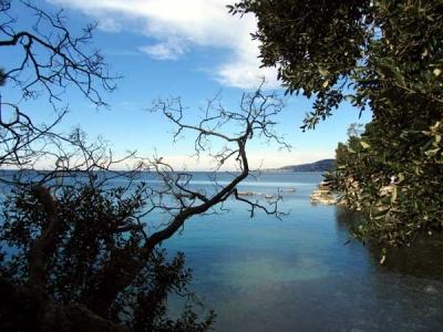 Trieste by the adriatic sea