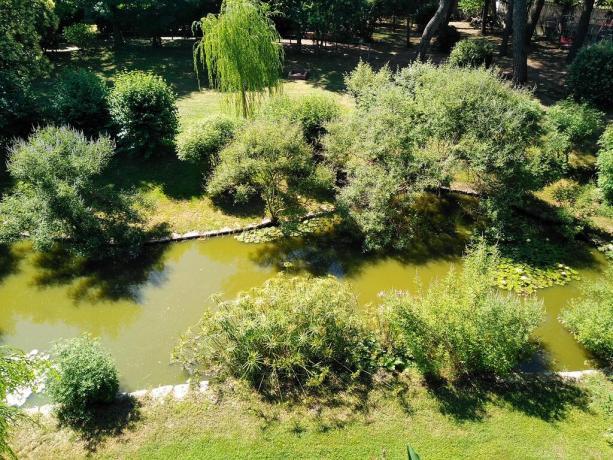 Casolare in Umbria con laghetto e ninfee