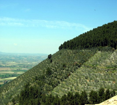 panoramica-tranquillita