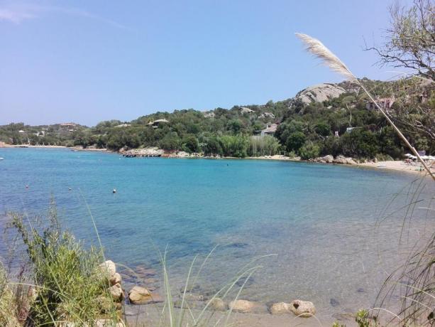 Mare cristallino della Sardegna ad Arzachena