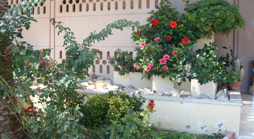Piante e fiori nel giardino