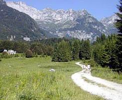 Skiing, trekking, hoarseriding or climbing in Piancavallo