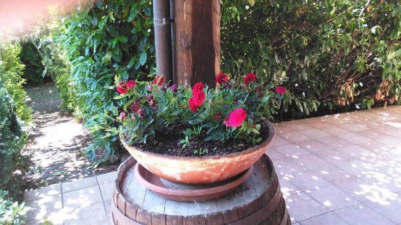 B&B con giardino in Villa Roio Piano, l'Aquila