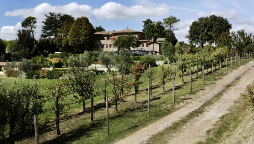 Tenuta Deluxe con cantina vicino Orvieto, Umbria