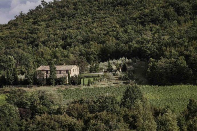 Villa in Toscana con Piscina Idromassaggio e Giardino