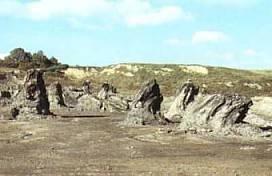 Il giacimento fossile
