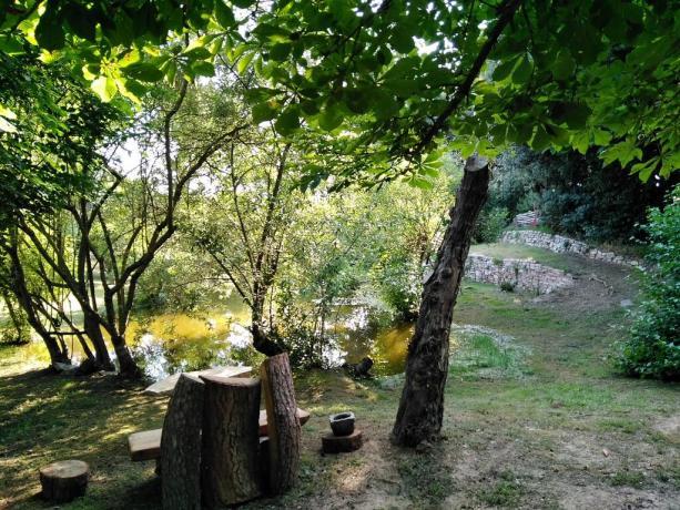 Casale con laghetto ideale per animali Castiglione-del-Lago