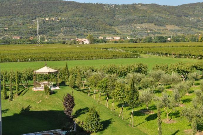 Agriturismo nel verde tra oliveti e vigneti