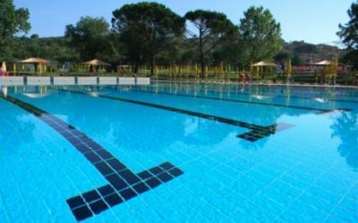 Piscina per nuotatori professionisti. con trampolino