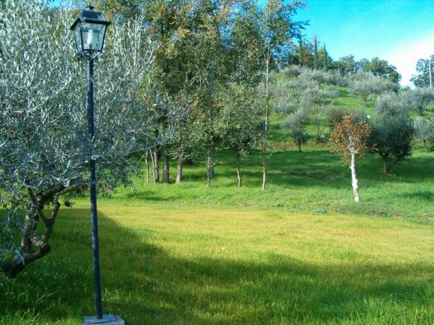 Villa Perugia per vacanza 12/18 persone con giardino