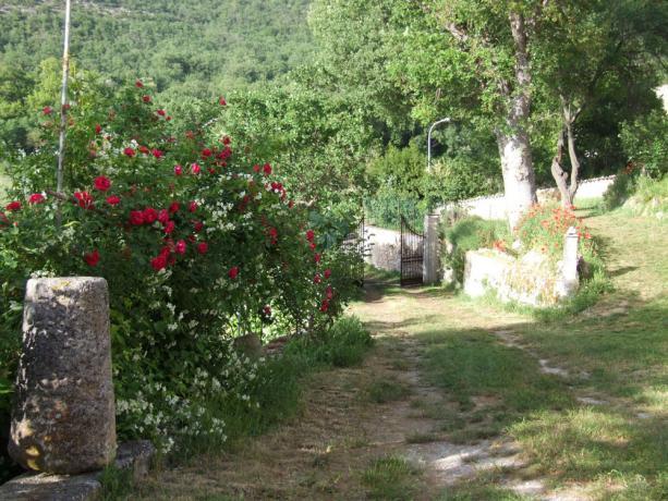Appartamenti in Abruzzo immersi nella natura
