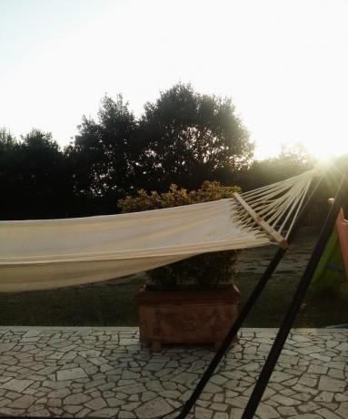 Amaca giardino casa vacanze a Vasanello