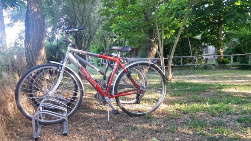 Gita in bicicletta lungo Lago Trasimeno