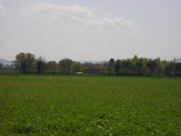 Vista Della Tenuta Agricola Immersa Nel Verde