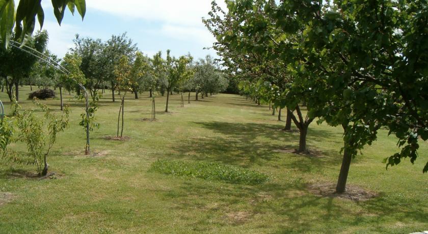 Agriturismo immerso nel verde vicino Argentario