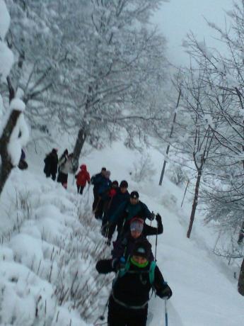 Escursione guidata Balze di Verghereto con Neve. Ciaspolata