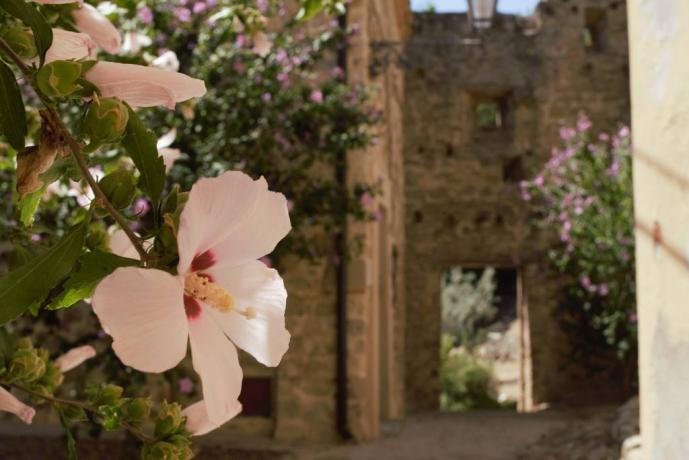 Dependance borgo medievale umbro