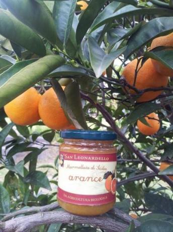 Marmellate fatte con arance biologiche