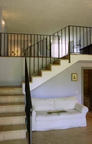 Lavanda scale particolare