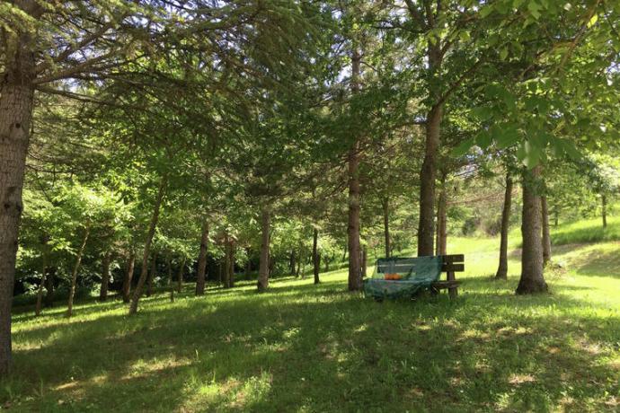 Agriturismo in Autogestione Marche: giardino - area comune