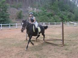 Trekking a cavallo e campus per ragazzi